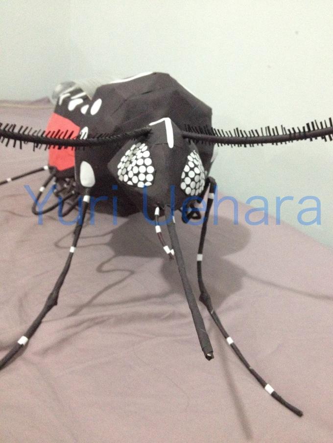 dengue06