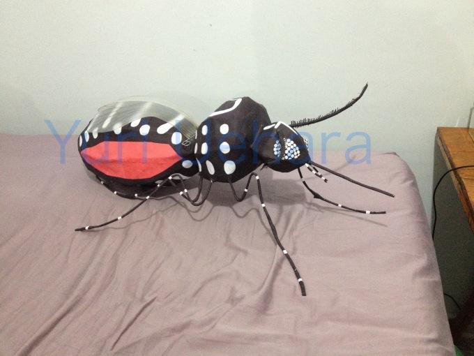 dengue07